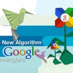 Google Hummingbird  – The healer of White Hat SEO in Hosting