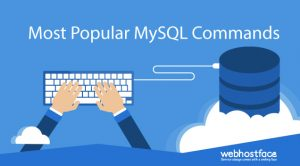 Most Popular MySQL Commands