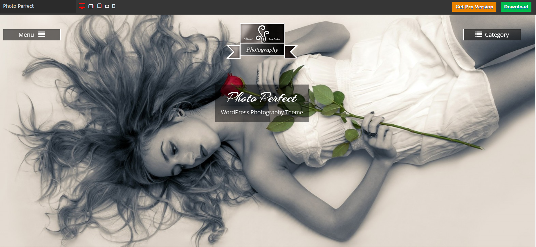 Photo Perfect WordPress Theme