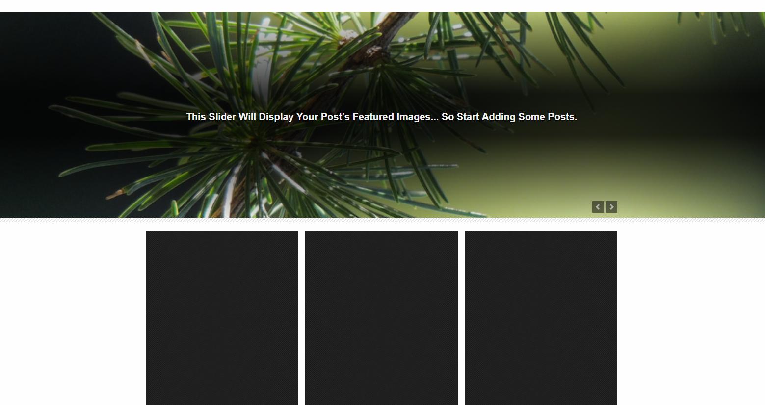 Snapshot WordPress Theme